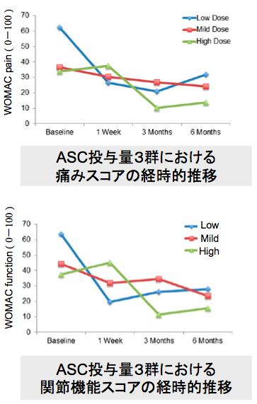 培養幹細胞治療後の痛み・関節機能スコアの変化